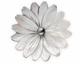 Broška Lotusov cvet z biserom