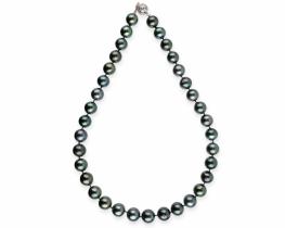 Biserna ogrlica TAHITI 11-12 mm