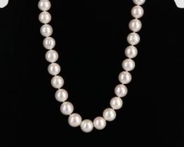 Biserna ogrlica OPRAH 13-15 mm - srebro
