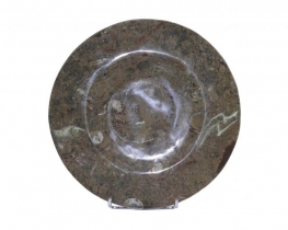 Krožnik iz fosilov