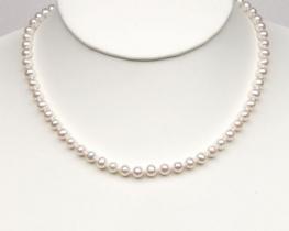 Ogrlica MIMI iz biserov 5,5 mm A - zlata zaponka