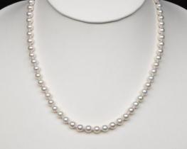Ogrlica iz morskih biserov A 6 mm
